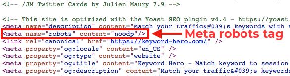 robots meta tag source code